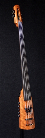 Electric Omni Bass NS Design CR5 Amber