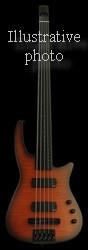 NS NXT5a RADIUS BASS GUITAR SATIN SUNBURST - FRETTED NECK